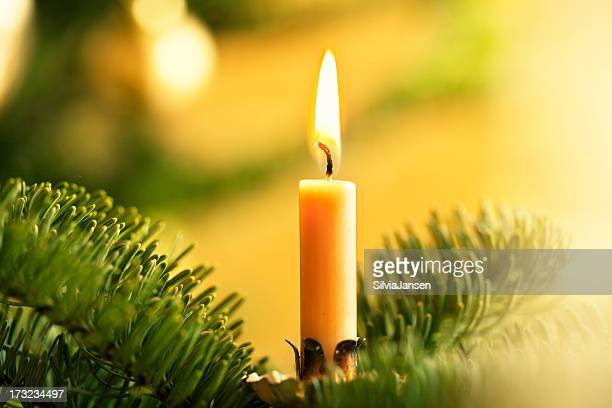 golden candle burinig in tree