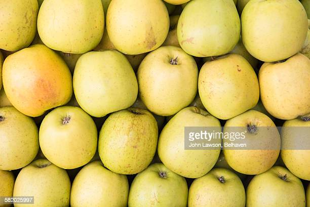 Golden Delicious apples neatly organised