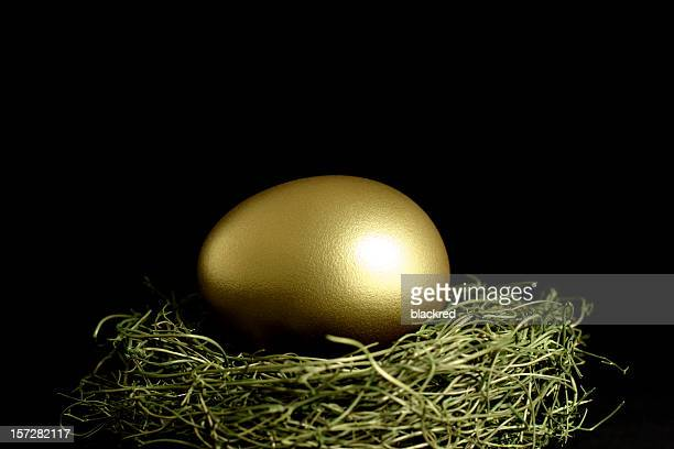 Golden Egg in Nest on Black Background