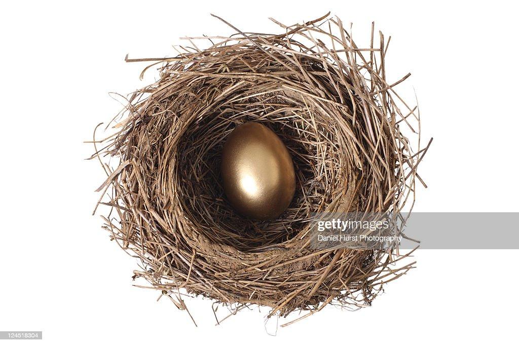 Golden egg in nest : Stock Photo
