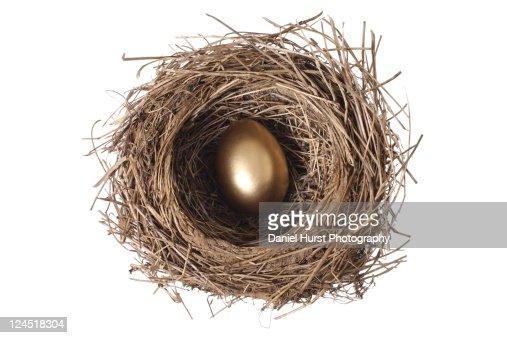 Golden egg in nest : Bildbanksbilder