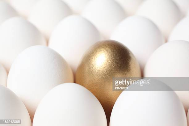 Golden Egg in the Middle of Many White Eggs