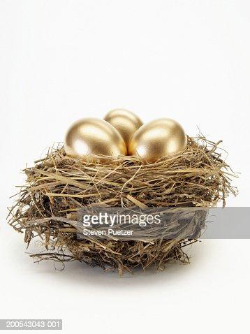 Golden eggs in bird's nest : Bildbanksbilder