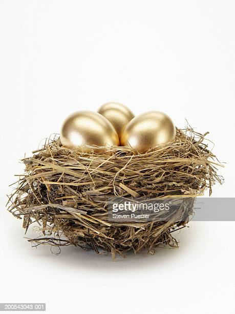 Golden eggs in bird's nest