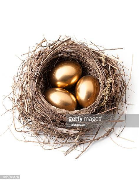 Golden eggs in nest.