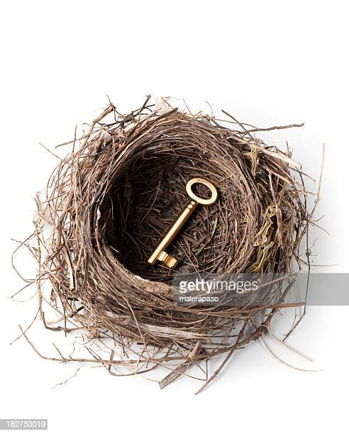 Golden key in the nest