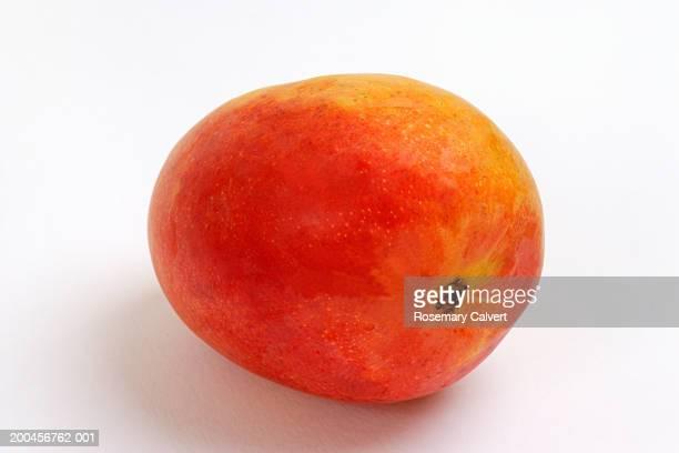 Golden mango, close-up