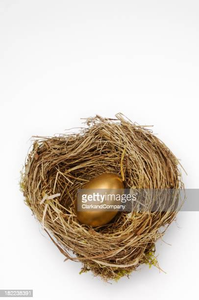 Golden Nest Egg For Retirement Pension White Background