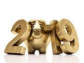 New year 2019 concept with golden pig