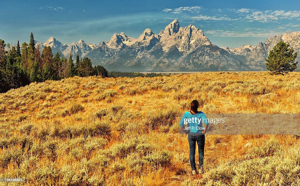 Golden plateau in Tetons : Stock Photo