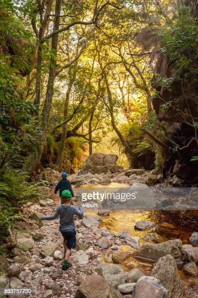 Golden reflection in mountain stream with boys