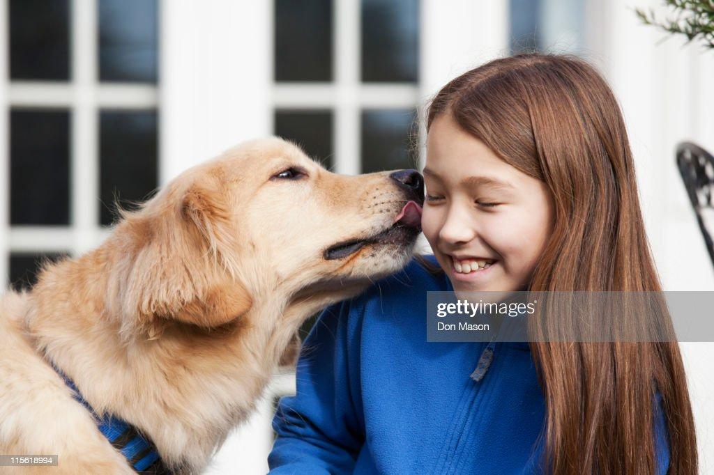Golden retriever licking mixed race girl : Stock Photo