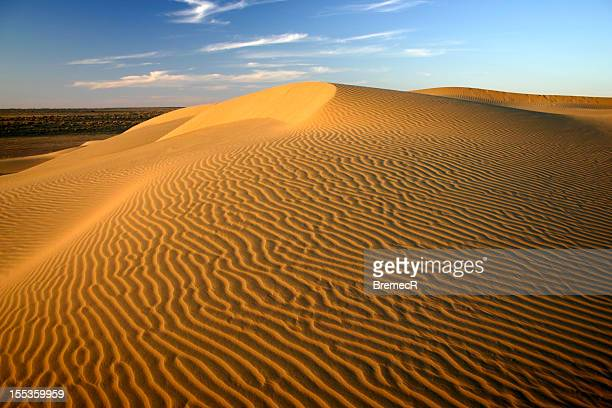 Golden sand dunes in Thar desert