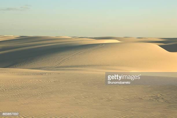 Dunes de sable blond des lentilles de Maranhão
