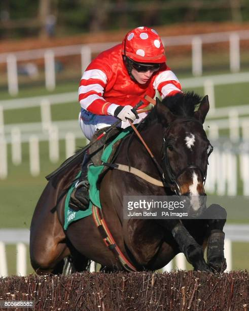 Golden Silver ridden by Paul Townend goes on to win in the Paddy Power DialaBet Steeplechase during the Christmas Festival at Leopardstown Racecourse...