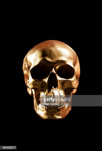 Golden skull with copy space