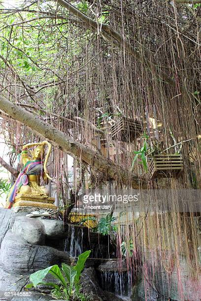 Golden statue and weeping willow Wat Saket temple Bangkok Thailand