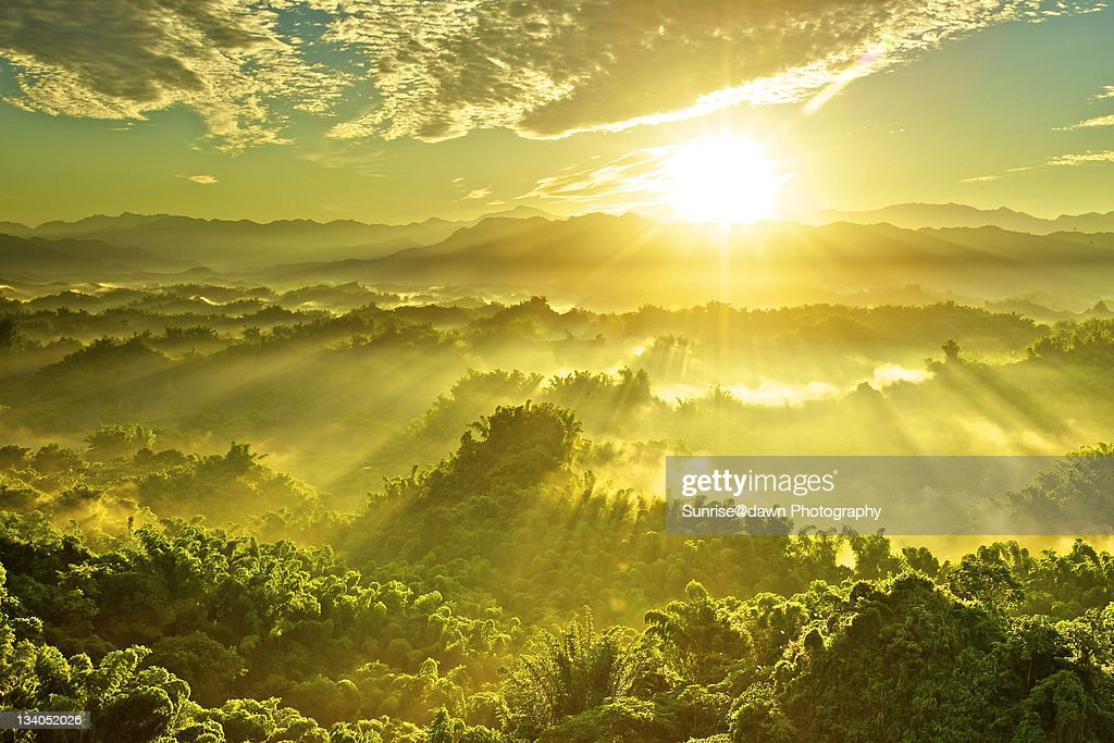 Golden sunrays : Stock Photo
