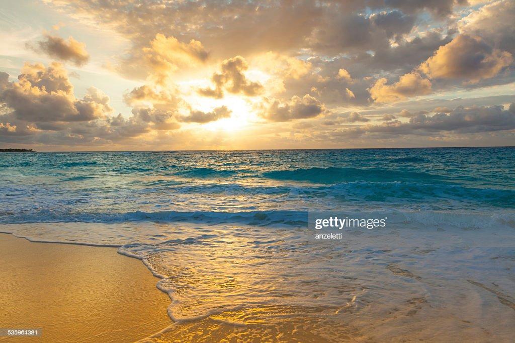 Golden sunrise on a tropical island : Stock Photo