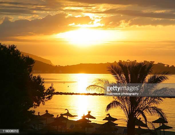Golden sunrise sunset