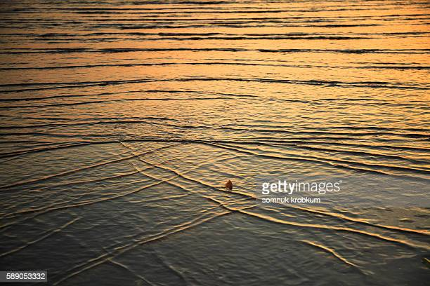 Golden Sands Stock Photos And Pictures Getty Images