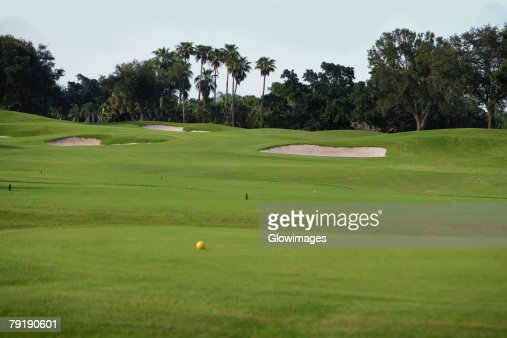 Golf ball in a golf course : Foto de stock