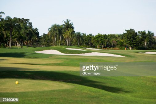 Golf ball in a golf course : Foto de stock