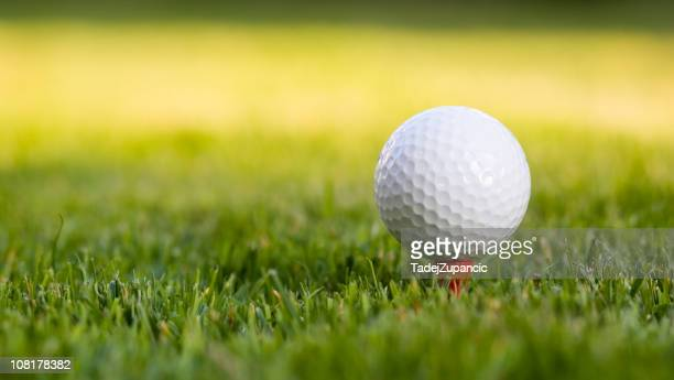 Golf ball on the tee