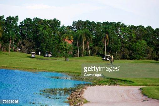 Golf carts in a golf course : Foto de stock