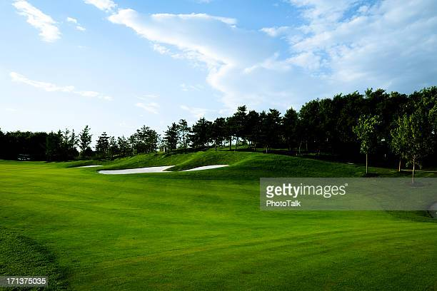 Golf Course Background - XLarge