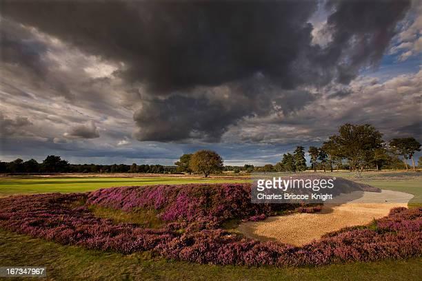 Golf  course, UK