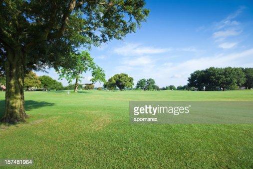 Golf Fields