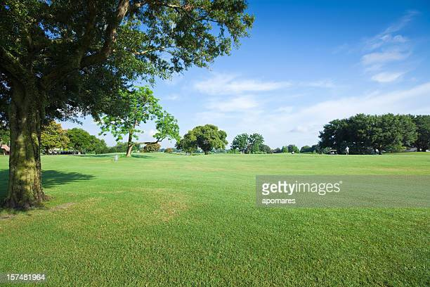 Golf Fields