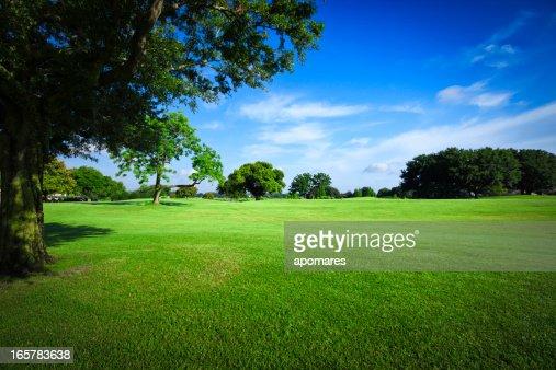 ゴルフのフィールド