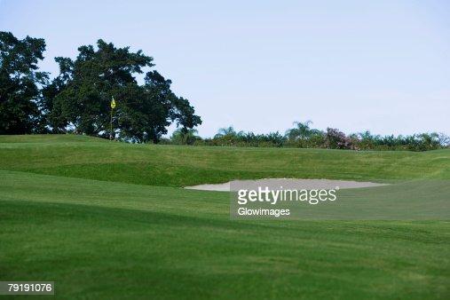 Golf flag in a golf course : Foto de stock