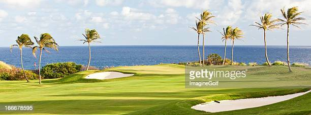 Golf Green By the Sea
