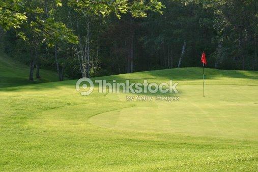 Golf green : Stock Photo