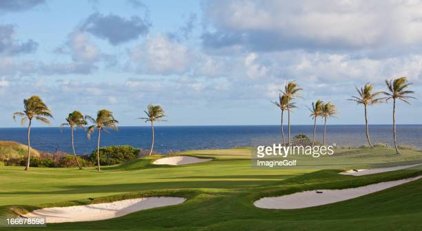ゴルフには、トロピカルな雰囲気