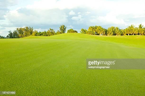 Golf Landscape  XXXL