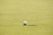 Travelers Championship View of golf ball rolling into pin hole on green during Sunday play at TPC River Highlands Equipment Cromwell CT CREDIT Darren...