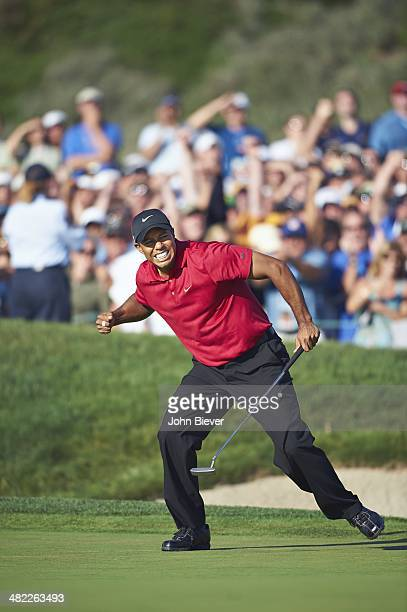 US Open Tiger Woods victorious reacting after making birdie putt on No 18 during Sunday play at Torrey Pines GC La Jolla CA CREDIT John Biever