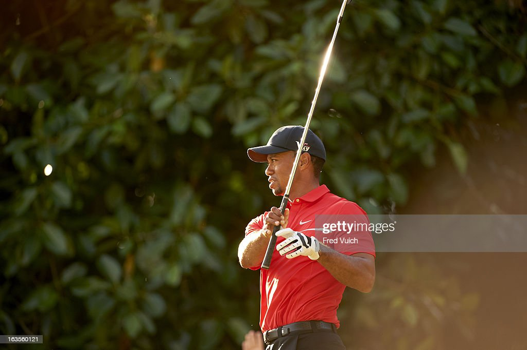 Closeup of Tiger Woods in action during Sunday play at TPC Blue Monster Course of Doral Resort & Spa. Fred Vuich F233 )