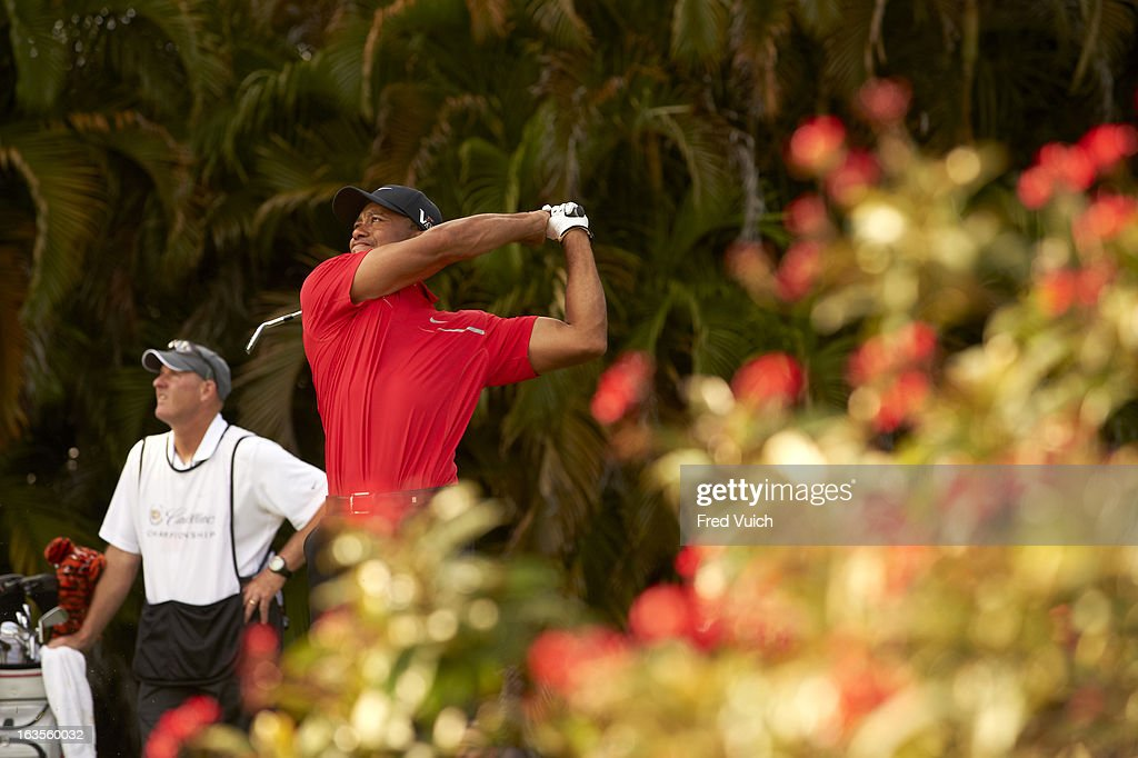 Tiger Woods in action, drive from No 15 tee during Sunday play at TPC Blue Monster Course of Doral Resort & Spa. Fred Vuich F107 )
