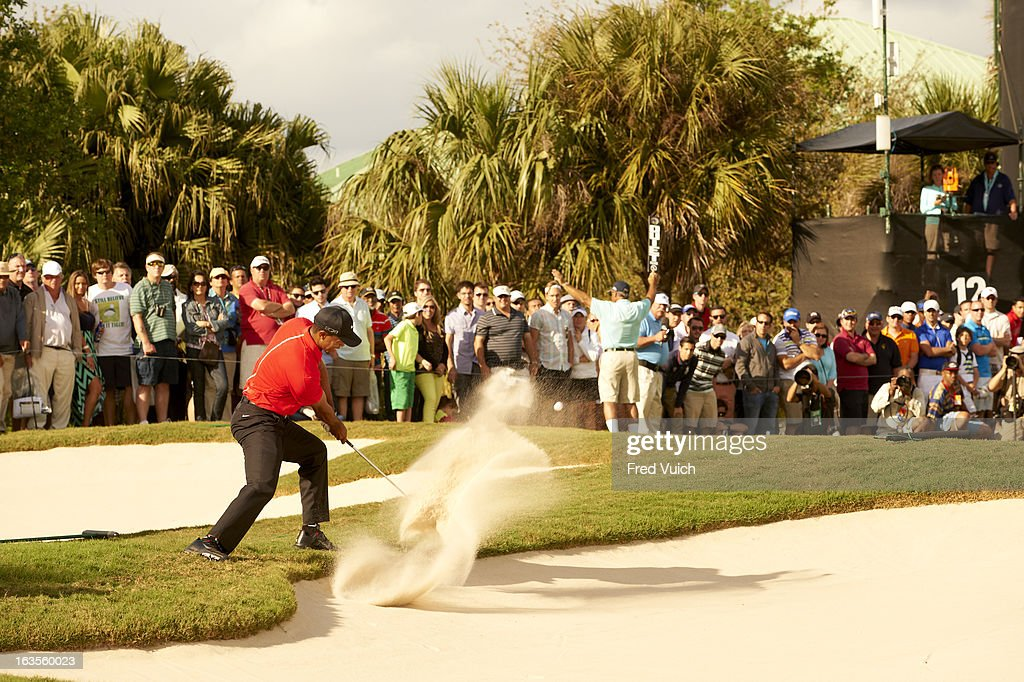 Tiger Woods in action from bunker on No 12 hole during Sunday play at TPC Blue Monster Course of Doral Resort & Spa. Fred Vuich F72 )