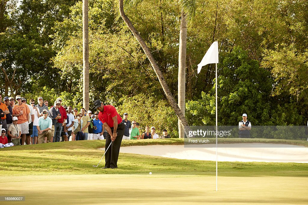 Tiger Woods in action on No 13 hole during Sunday play at TPC Blue Monster Course of Doral Resort & Spa. Fred Vuich F86 )