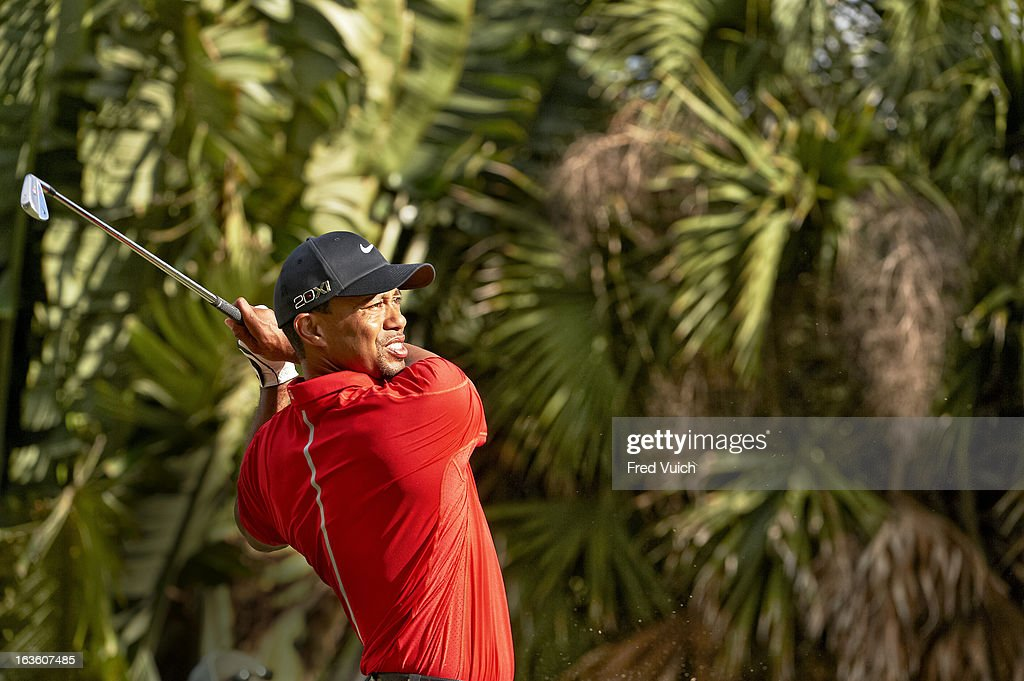 Tiger Woods in action on Sunday at TPC Blue Monster Course of Doral Resort & Spa. Fred Vuich F184 )