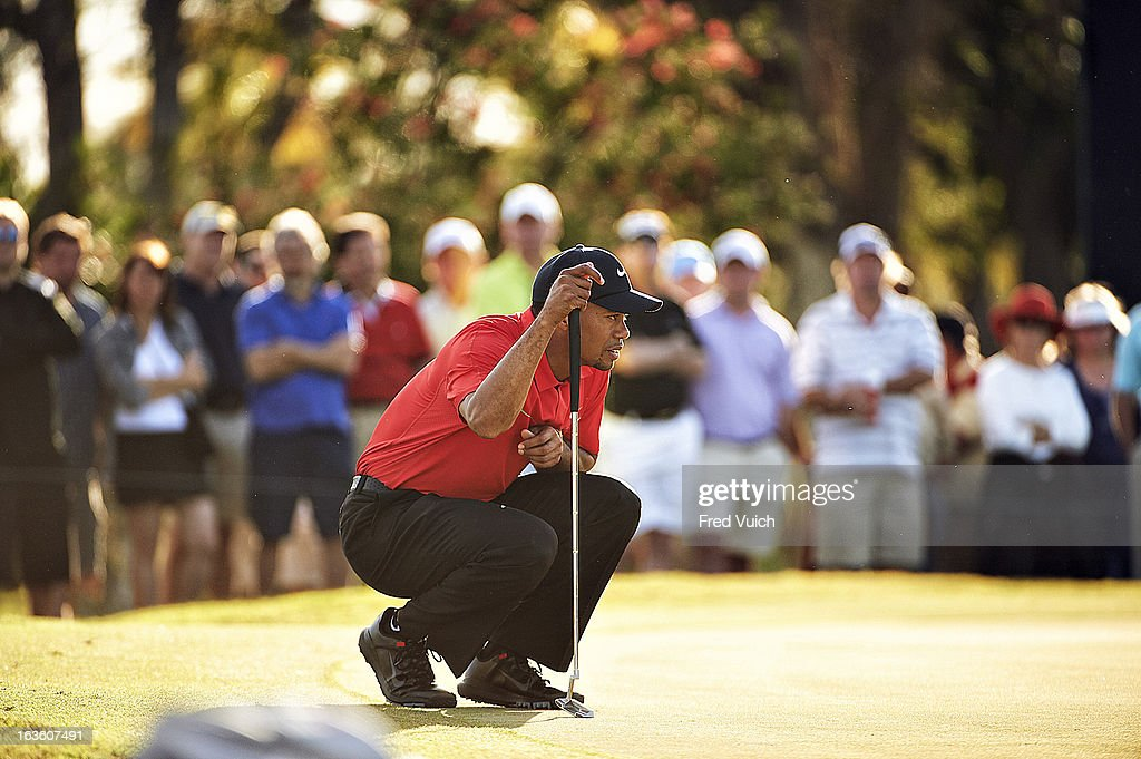Tiger Woods reading the green during Sunday play at TPC Blue Monster Course of Doral Resort & Spa. Fred Vuich F251 )