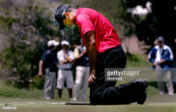 Golfer Tiger Woods falls to his knees after his first putt on hole seven during the sudden death round at the 108th US Open at Torrey Pines Golf...
