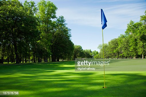 Golfing green with blue flag in the hole