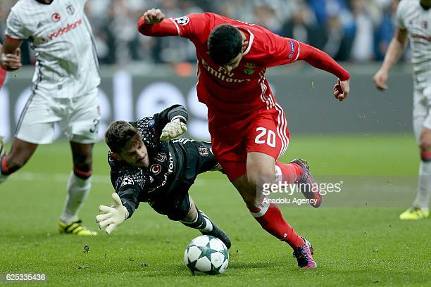 Goncalo Guedes of Benfica in action against Fabri of Besiktas during the UEFA Champions League Group B football match between Besiktas and Benfica at...